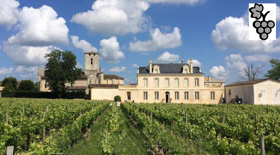 15/18th C. vineyard chateau  for  sale