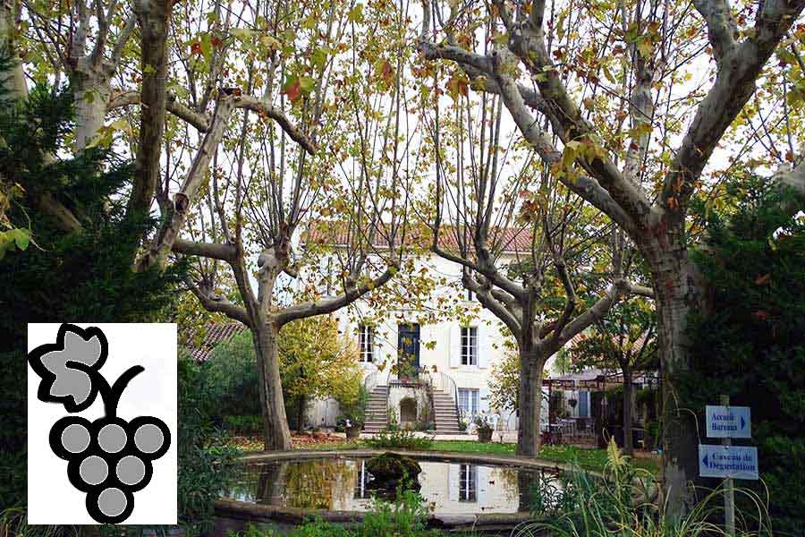 Historic Corbières Vineyard for sale -7 Apartments.