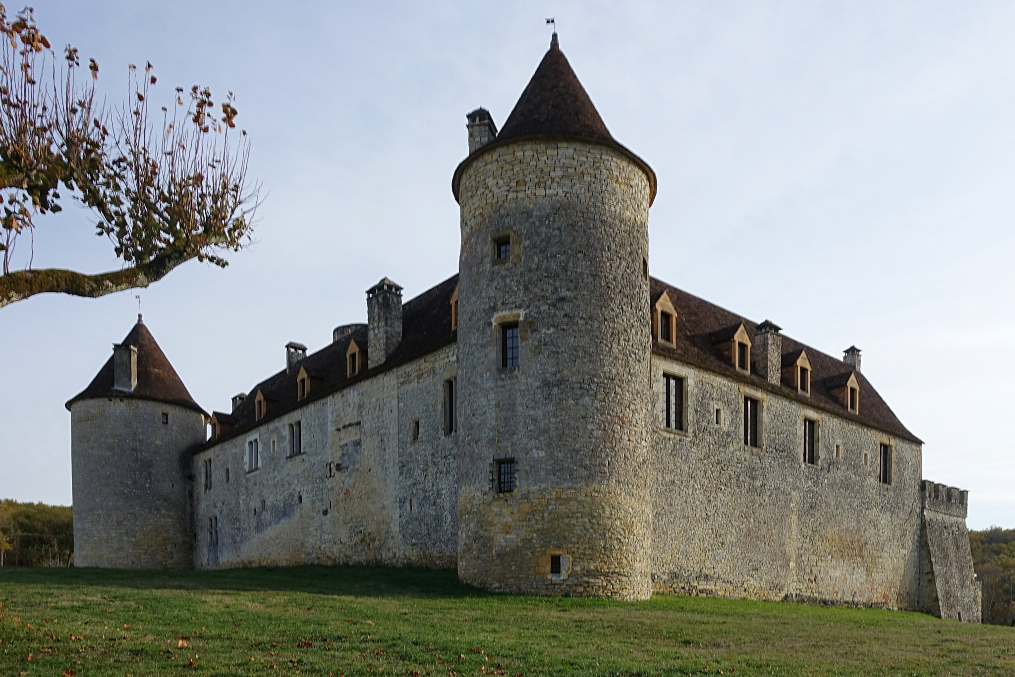 Superb Medieval Chateau for sale with hobby vineyard